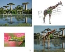 Kertenkele ve Zürafa Manipülasyon (Before - After)